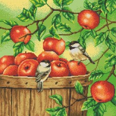 Яблоки рисунок на канве 40/40 40х40 Конек 7811