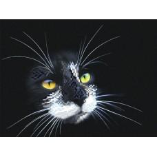 Черный кот Рисунок на шелке 28/34 28х34 (18х24) Матренин Посад 4102