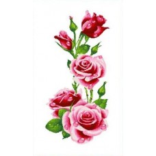 Розы Рисунок на канве 37х70 Каролинка КК 602