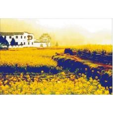 Желтый пейзаж набор для выкладывания стразами 64х45 Jing Cai Ge Diamond Painting DIY (Honey Home) 7178