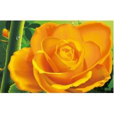 Роза набор для частичной  выкладки стразами 30х39 Солнце H-4112
