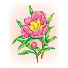 Радость Рисунок на канве 30х21см 20х15(30х21) МП-Студия СК-032