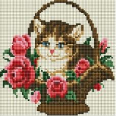 Котенок в корзинке Мозаика на подрамнике 20х20 20х20 Белоснежка 324-ST-S