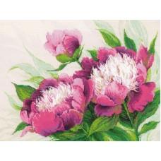 Набор Розовые пионы 40х30 Риолис 100/039