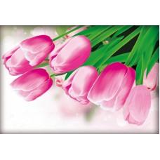 Розовые тюльпаны набор для частичной  выкладки стразами 89х60 Солнце H-4103