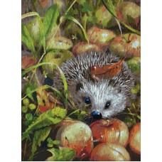 Яблочный ежик живопись на холсте 30*40см 30х40 Белоснежка 140-AS