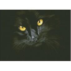 Черная кошка набор для выкладывания стразами 52х38 Паутинка М-301