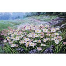 Набор Луговые цветы 45х29 Магия канвы Б-253