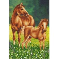 Лошадь с жеребенком (рис. на ткани 39х27) 39х27 Магия канвы КС-066