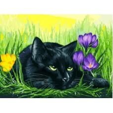Кот и крокусы живопись на картоне 30*40см 30х40 Белоснежка 3113-CS