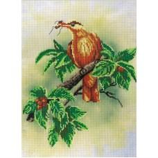 Птичка с ягодами набор диз.канва+мулине 20х30 МП-Студия РК-309