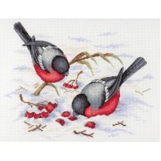 Набор Зимние ягоды 20х25 МП-Студия НВ-639