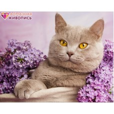 Кот в сирени Набор для выкладывания стразами 40х30 Алмазная живопись АЖ-1417