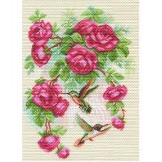 Розы и колибри Набор для вышивания крестом 37х49 (28х39) Матренин Посад 1755/Н