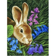 Кролик живопись на холсте 30*40см 30х40 Белоснежка 115-AS