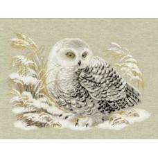 Набор Белая сова 45х35 Риолис 1241