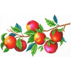 Урожай яблок Рисунок на канве 40х30см