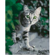 Удивленный кот живопись на холсте 40х50