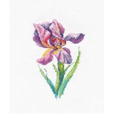 Набор Радужный цветок