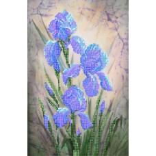 Синие ирисы Рисунок на шелке 28/34 28х34 (18х27) Матренин Посад 4021