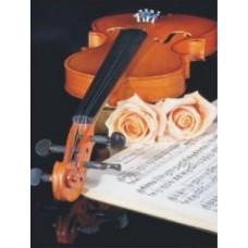 Скрипка набор для выкладывания стразами 53х70 Jing Cai Ge Diamond Painting DIY (Honey Home) 1102