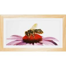 Набор для вышивания Пчела на эхинацее, канва лен 36 ct
