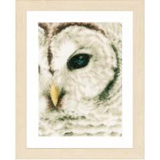 Набор для вышивания Owl LANARTE