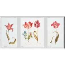 Набор для вышивания Тюльпаны Джейкоба Маррель и Джудит Лейстер, 16-й век, канва Aida 18 ct