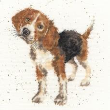 Набор для вышивания Beagle (Бигль)