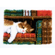 Набор для вышивания коврика Кот на книжной полке
