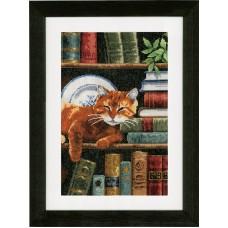 Набор для вышивания Кот на книжной полке