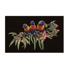 Набор для вышивания Стайка попугаев, канва Aida (черная) 16 ct