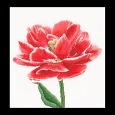 Набор для вышивания Ранний, красно-белый тюльпан, канва лён 36 ct