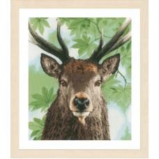 Набор для вышивания Proud red deer