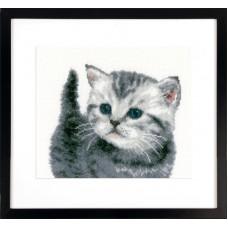 Набор для вышивания Серый котёнок
