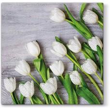 Салфетки трехслойные для декупажа, коллекция Lunch PAWDecorCollection Белые тюльпаны