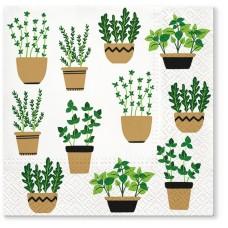 Салфетки трехслойные для декупажа, коллекция Lunch TETЕaTETE Растения в горшках