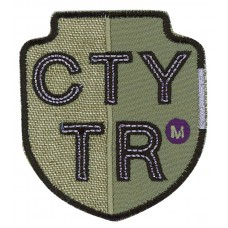 Термоаппликация CTYTR