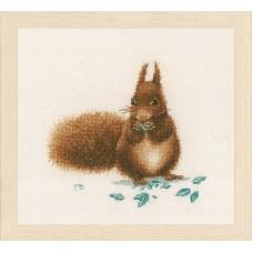 Набор для вышивания Squirrel