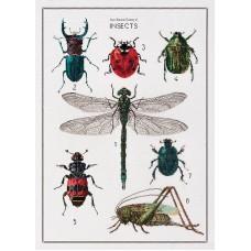 Набор для вышивания История насекомых, канва лён 32 ct