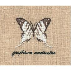 Набор для вышивания: PAPILLON : GRAPHIUM (Бабочка GRAPHIUM)