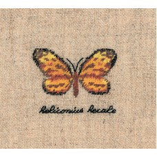 Набор для вышивания: PAPILLON : HELICONIUS (Бабочка HELICONIUS)