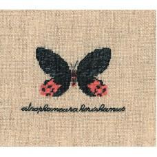 Набор для вышивания: PAPILLON : ATROPHANEURA( Бабочка ATROPHANEURA)