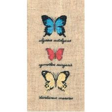 Набор для вышивания: PAPILLONS : ULYSSES AUTOLYCUS, CYMOTHOE SANGARIS, DARDANUS  (Бабочки  ULYSSES