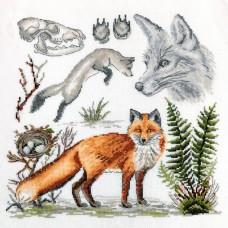 Набор для вышивания Зоология. Лисица обыкновенная