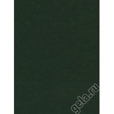 Лист фетра, темно-зеленый, 30 х 45 см х 3 мм