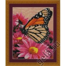 Набор для вышивания Бабочка-данаида