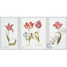 Набор для вышивания Тюльпаны, канва лён 36 ct