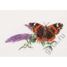 Набор для вышивания Бабочка-Buddleja, канва аида 18 ct