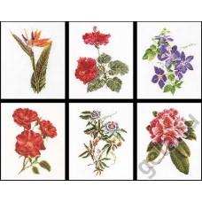 Набор для вышивания Шесть цветочных исследований, канва лён 36 ct